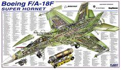 """Um """"cutaway"""" mostrando o esquema geral da estrutura do Super Hornet. Origem da imagem: FlighGlobal (www.flighglobal.com)."""