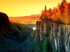 Images Canada Canada landscape Autumn Lights, Autumn Trees, Landscape Wallpaper, Nature Wallpaper, Wallpaper Gallery, Landscape Photos, Landscape Photography, Photography Ideas, Landscape Design