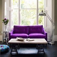 Natural light and awesome color sofa.