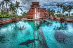 leap-of-faith-water-slide-atlantis
