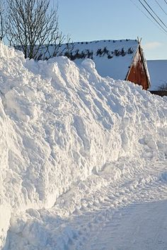 Snowed in....I remember snow drifts like this !