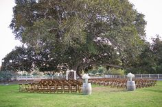 sommerset arch, fruitwood folding chairs, wine barrel floral stand, wedding ceremony, https://partypleasersblog.wordpress.com, http://instagram.com/partypleasers,