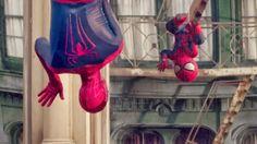 Manaós Sa Ltda: The Amazing Spider-babe!!!