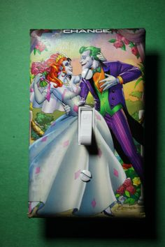 What an awesome light switch cover!