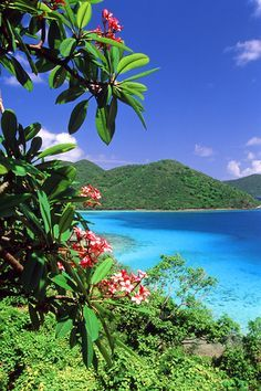 St John virgin Islands