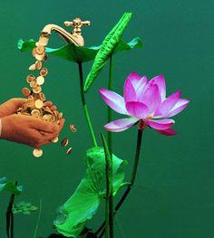 Decent Image Scraps: Lotus Flower
