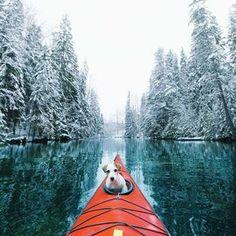 un kayak, un chien, un appareil photo. No problem. More