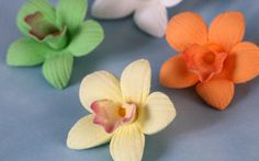 Mini Cymbidium Orchid Cupcake Toppers.