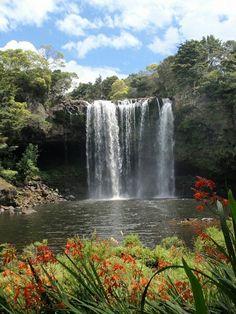 Rainbow falls, beautiful and peaceful place! Kerikeri, Bay of Islands, New Zealand.