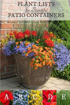 Gardening Container Plant lists for beautiful patio containers. Image by Proven Winners. - Want to know the secret to beautiful garden containers? These plant lists tell you exactly which plants you need to create these eye-catching planters. Patio Plants, Outdoor Plants, Outdoor Pots And Planters, Planters For Front Porch, Front Porch Flowers, Outdoor Gardens, Beautiful Gardens, Beautiful Flowers, Outdoor Flowers