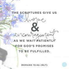 Romans 15:4b (NLT) #Scripture @proverbs31min