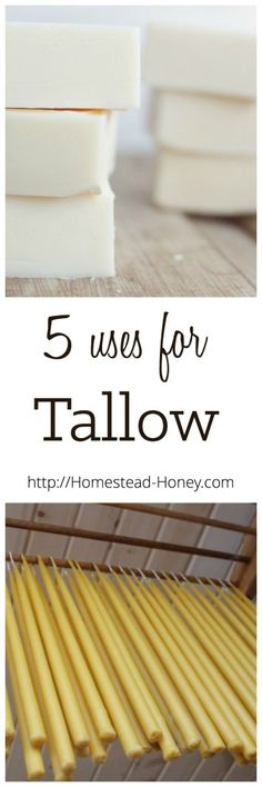 Tallow, or rendered beef fat, is a true homesteader's fat, and can be used in a variety of ways. Here are five DIY ways to use tallow in your home. | Homestead Honey