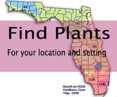 Florida Native Plant Society - to promote the preservation, conservation, and restoration of the native plants and native plant communities of Florida.