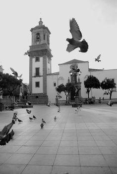 Plaza Alta, Algeciras. Fotografía de Gema Bernal