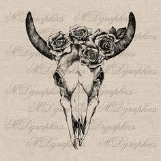 Vintage Bull Skull and Rose illustrations Digital by MDgraphics, $3.00 ...