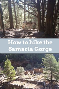 Are you going to the Samaria Gorge Crete? Here you will find everything you need to know to hike the Samaria gorge. A complete guide to Samaria Gorge Crete Greece Itinerary, Greece Travel, Greece Trip, Visit Greece, Travel Europe, Crete In October, Cool Places To Visit, Places To Travel, Travel Destinations