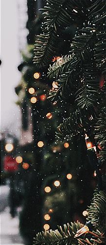 ideas natural christmas tree decorations life for 2019 Christmas Time Is Here, Christmas Mood, Noel Christmas, Merry Little Christmas, Christmas Cards, Holiday Mood, Christmas Phone Wallpaper, Christmas Aesthetic Wallpaper, Wallpaper Aesthetic