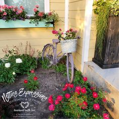 From Rusty Bike to Flower Planter   Netties Expressions Pink Spray Paint, Color Spray, Lilac Painting, Pink Bike, Old Baskets, Monday Inspiration, Lilac Color, Big Windows, Flower Planters