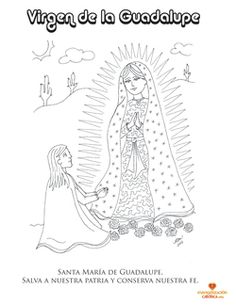 Dibujo para colorear. Virgen de la Guadalupe. www.evangelizacioncatolica.com