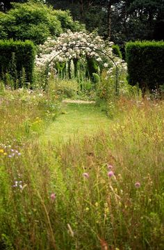 Wild flower meadows work wonderfully with the cons.tn - Leading Flowers Magazine, Daily Beautiful flowers for all occasions