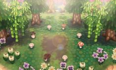 My own fairy ring
