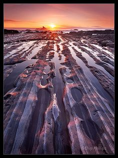 Rock rows seen from the shore in Olympic National Park, Washington