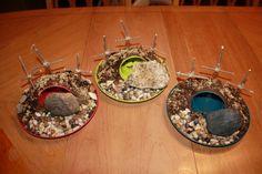 Our mini resurrection gardens