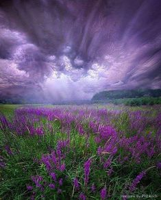 Post with 57 votes and 1588 views. Tagged with nature, photography, awesome, thunderstorm, the great outdoors; Shared by PhilKoch. Trials And Tribulations Beautiful Sky, Beautiful Landscapes, Beautiful World, Beautiful Places, Landscape Photos, Landscape Photography, Nature Photography, Photography Props, Nature Pictures