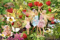 Summer Fairies Photograph by Steve Read