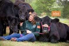 Cierra Padgett with her show 4H heifers cattle black angus on Animal Element Detox