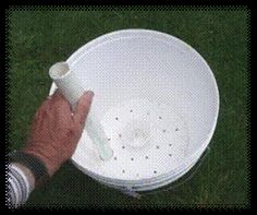 They claim you can grow 50 carrots in a 5-gallon bucket...original link was dead, so I found this video tute.