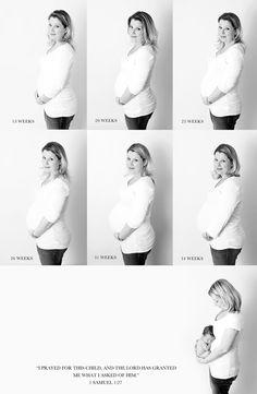 Pregnancy progression photos
