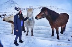 Why visiting Iceland in winter is an excellent idea based on my own experiences traveling around the country in February.