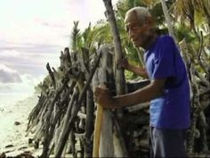 Many small island nations can adapt to climate change with global support