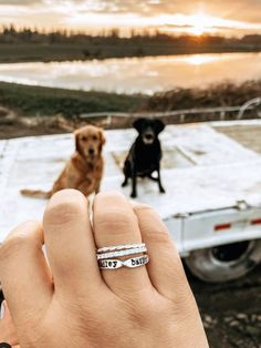 Dog Clothes Wedding Includes a pinched ring that fits 3 names classic tone ring and a top seller twine ring.Dog Clothes Wedding Includes a pinched ring that fits 3 names classic tone ring and a top seller twine ring Cute Funny Animals, Cute Baby Animals, Best Friends Pets, Cute Dogs And Puppies, Doggies, Dog Accessories, Cute Jewelry, Dog Mom, Puppy Love