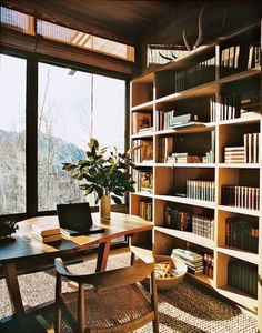 Lots of light and a huge bookcase