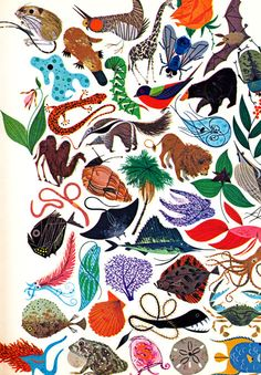Les Merveilles de la Vie (c. 1961) by Jean Rostand, with illustrations by Charley Harper