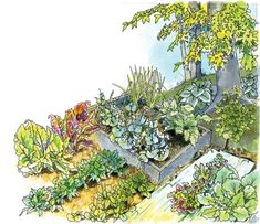 Best Vegetables to Grow in the Shade Even in shaded conditions, you can bask in great garden harvests.  Raised Garden Beds and Vertical Vegetable Plantings