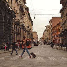 #ig_bologna#ig_bologna_#ig_emiliaromagna#ig_emilia_romagna#ig_italia#ig_italy#igersbologna#igersemiliaromagna#igersitalia#ig_fotoitaliane#igfriends_emiliaromagna_#ita_details#turismoer by gebo_75