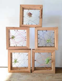 Air plant personal Rustic Reclaimed Recycled salvaged wood holders. Vase, wall decor, geometric, terrarium wedding birthday Valentines gift