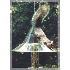 Arundale Mandarin Hanging Squirrel Baffle