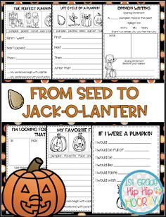 From Seed to Jack-o-lantern...Interactive and Paper Pencil! Poetry Anchor Chart, Anchor Charts, Word Work Activities, Grammar Activities, Pumpkin Facts, Writing Complete Sentences, Pumpkin Life Cycle, Nouns And Adjectives, Word Work Centers