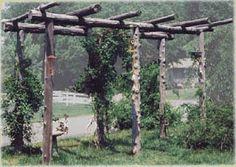 Rustic Arbor, Trellis, Outdoor Living, Backyard, Outdoor Structures, Landscape, Google, Garden, Image