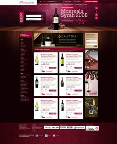Like the way the header fits in the layout - Winexpress by Mark Sousa, via Behance