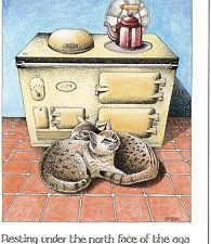 Simon Drew Funny Greetings Card North Face Of The Aga