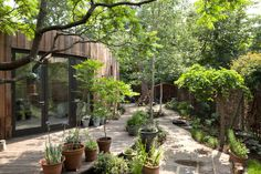 Recycled Timber Tree House Is Accessible by Wheelchair (3)