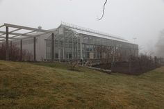 JANUARY 31, 2013 Bedford Gray | A view towards the vegetable greenhouse