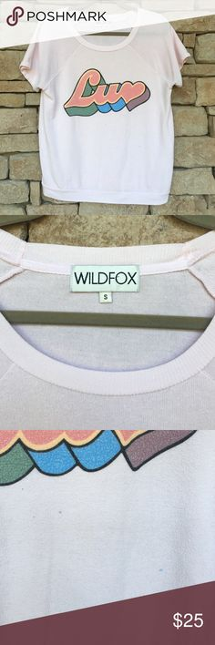 """WILDFOX LUV GRAPHIC CAMDEN SWEATER TEE WILDFOX LUV Graphic bbj tee. This one has been """"LUV'd"""" a bit more than the other Camden listed 😹 pardon my poor humor, but I couldn't help myself!!! It's still such a cute graphic but it's looking for a new home! 💙Please note the blue stains on the front! Don't buy it if you're not cool with them being there!💙Pale pink and not as thick as it used to be. Still stretchy though. Has miles left! Approximate Measurements as follows: pit to pit 19in…"""