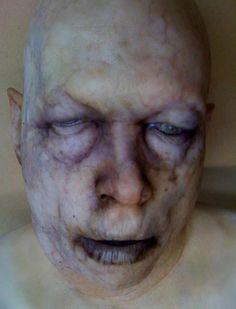 Tim Gore head