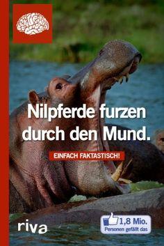 Nilpferde furzen durch den Mund: Einfach faktastisch!, http://www.amazon.de/dp/3868834230/ref=cm_sw_r_pi_awd_CYdLsb05P28VF